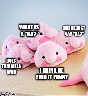 "DID HE JUST SAY ""HA?"" WHAT IS A ""HA?"" DOES THIS MEAN WAR I THINK HE FIND IT FUNNY 