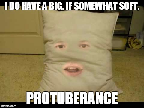 I DO HAVE A BIG, IF SOMEWHAT SOFT, PROTUBERANCE | made w/ Imgflip meme maker