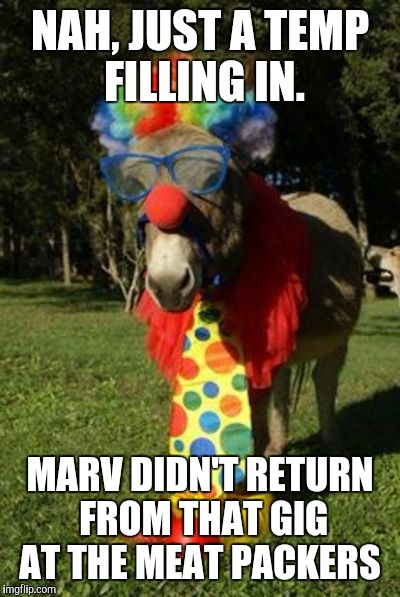 Ass clown | NAH, JUST A TEMP FILLING IN. MARV DIDN'T RETURN FROM THAT GIG AT THE MEAT PACKERS | image tagged in ass clown | made w/ Imgflip meme maker