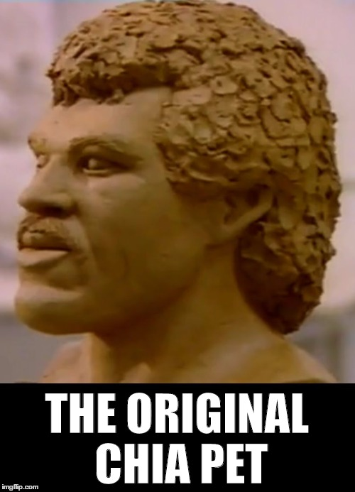 THE ORIGINAL CHIA PET | image tagged in chia richie | made w/ Imgflip meme maker