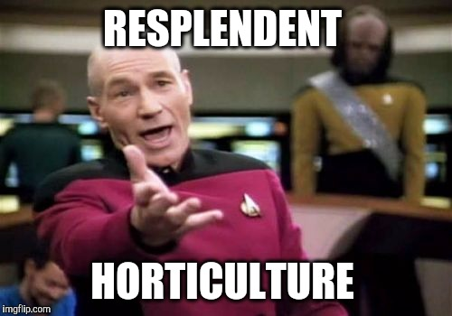 Picard Wtf Meme | RESPLENDENT HORTICULTURE | image tagged in memes,picard wtf | made w/ Imgflip meme maker