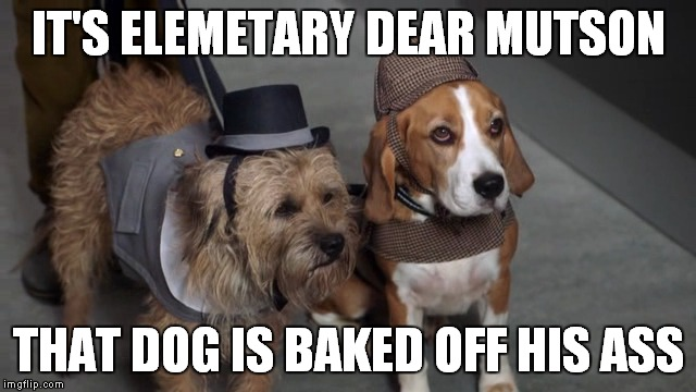 IT'S ELEMETARY DEAR MUTSON THAT DOG IS BAKED OFF HIS ASS | made w/ Imgflip meme maker