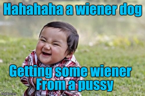 Evil Toddler Meme | Hahahaha a wiener dog Getting some wiener From a pussy | image tagged in memes,evil toddler | made w/ Imgflip meme maker