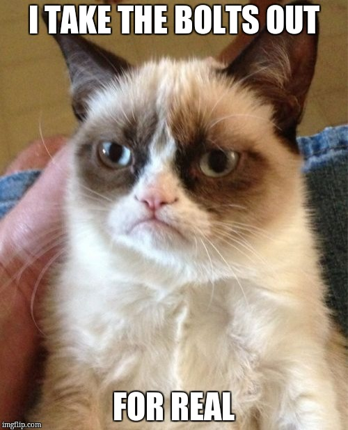 Grumpy Cat Meme | I TAKE THE BOLTS OUT FOR REAL | image tagged in memes,grumpy cat | made w/ Imgflip meme maker