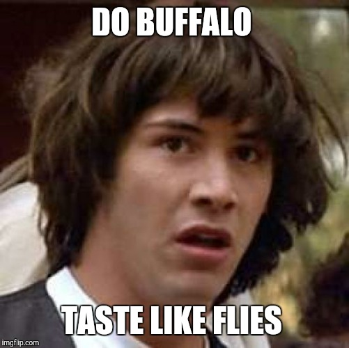 Conspiracy Keanu Meme | DO BUFFALO TASTE LIKE FLIES | image tagged in memes,conspiracy keanu | made w/ Imgflip meme maker