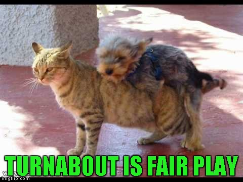 TURNABOUT IS FAIR PLAY | made w/ Imgflip meme maker