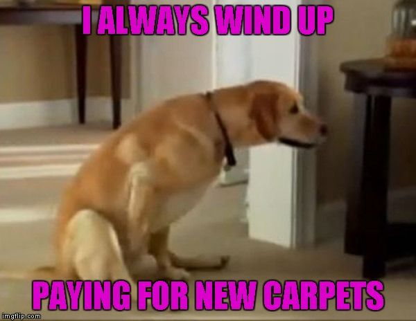 I ALWAYS WIND UP PAYING FOR NEW CARPETS | made w/ Imgflip meme maker