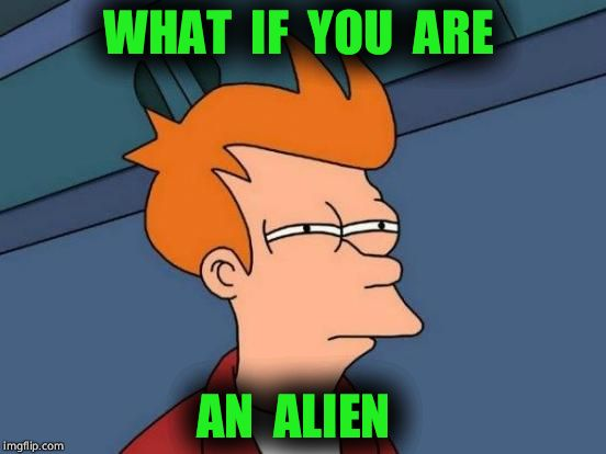 WHAT  IF  YOU  ARE AN  ALIEN | image tagged in memes,futurama fry | made w/ Imgflip meme maker