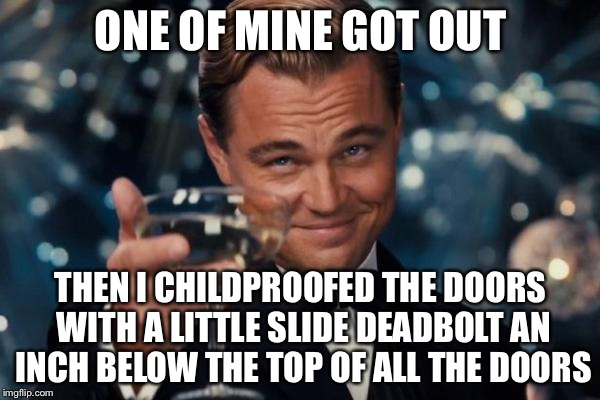 Leonardo Dicaprio Cheers Meme | ONE OF MINE GOT OUT THEN I CHILDPROOFED THE DOORS WITH A LITTLE SLIDE DEADBOLT AN INCH BELOW THE TOP OF ALL THE DOORS | image tagged in memes,leonardo dicaprio cheers | made w/ Imgflip meme maker