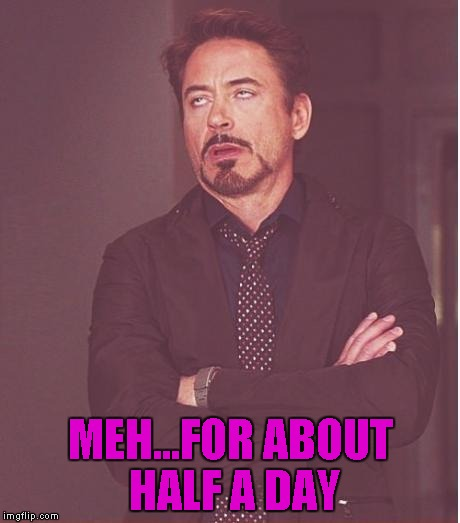 Face You Make Robert Downey Jr Meme | MEH...FOR ABOUT HALF A DAY | image tagged in memes,face you make robert downey jr | made w/ Imgflip meme maker