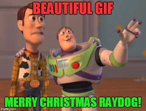 X, X Everywhere Meme | BEAUTIFUL GIF MERRY CHRISTMAS RAYDOG! | image tagged in memes,x x everywhere | made w/ Imgflip meme maker