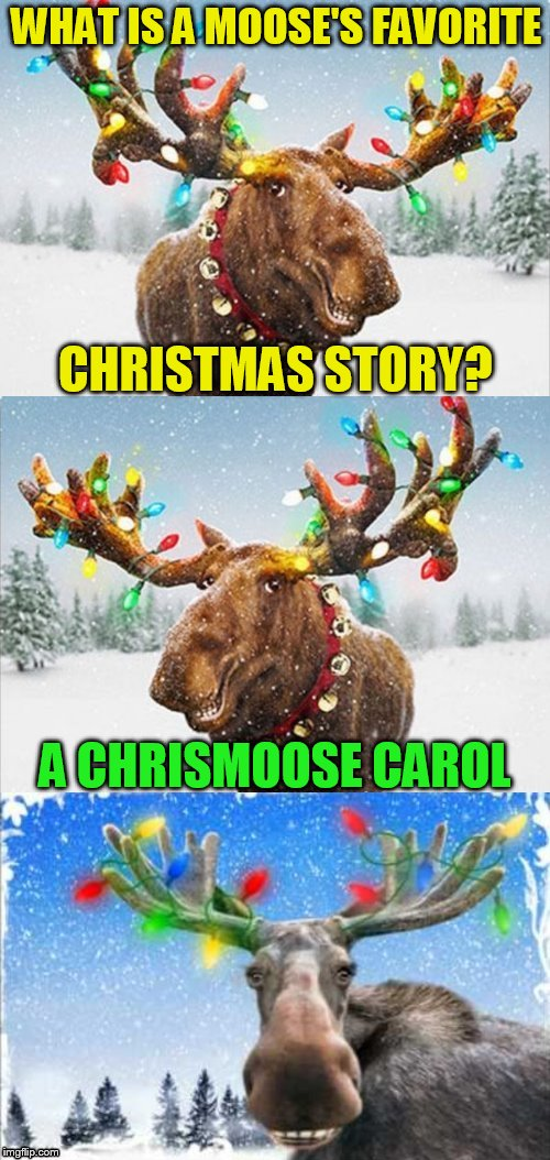 An AMOOSING Christmas Pun! | WHAT IS A MOOSE'S FAVORITE CHRISTMAS STORY? A CHRISMOOSE CAROL | image tagged in christmas memes,funny memes,jokes,moose,merry christmas,a christmas carol | made w/ Imgflip meme maker