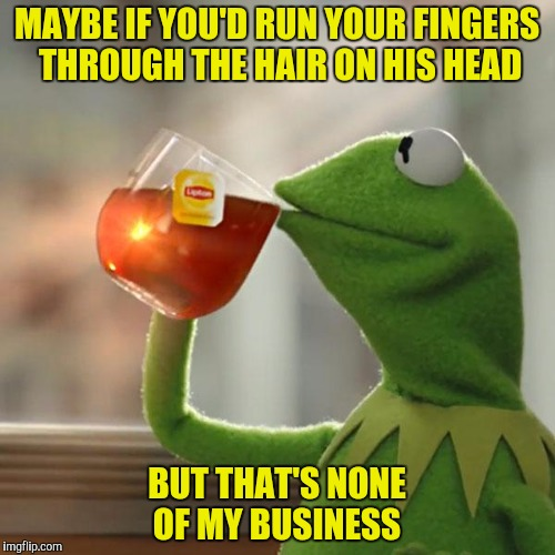 But Thats None Of My Business Meme | MAYBE IF YOU'D RUN YOUR FINGERS THROUGH THE HAIR ON HIS HEAD BUT THAT'S NONE OF MY BUSINESS | image tagged in memes,but thats none of my business,kermit the frog | made w/ Imgflip meme maker