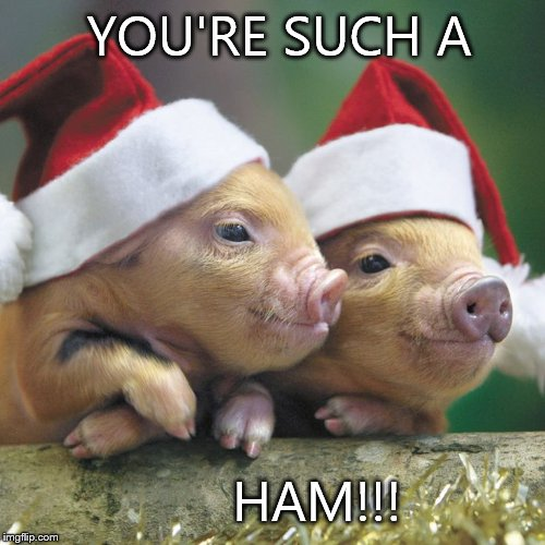 Christmas Pigs.Image Tagged In Christmas Pigs Imgflip