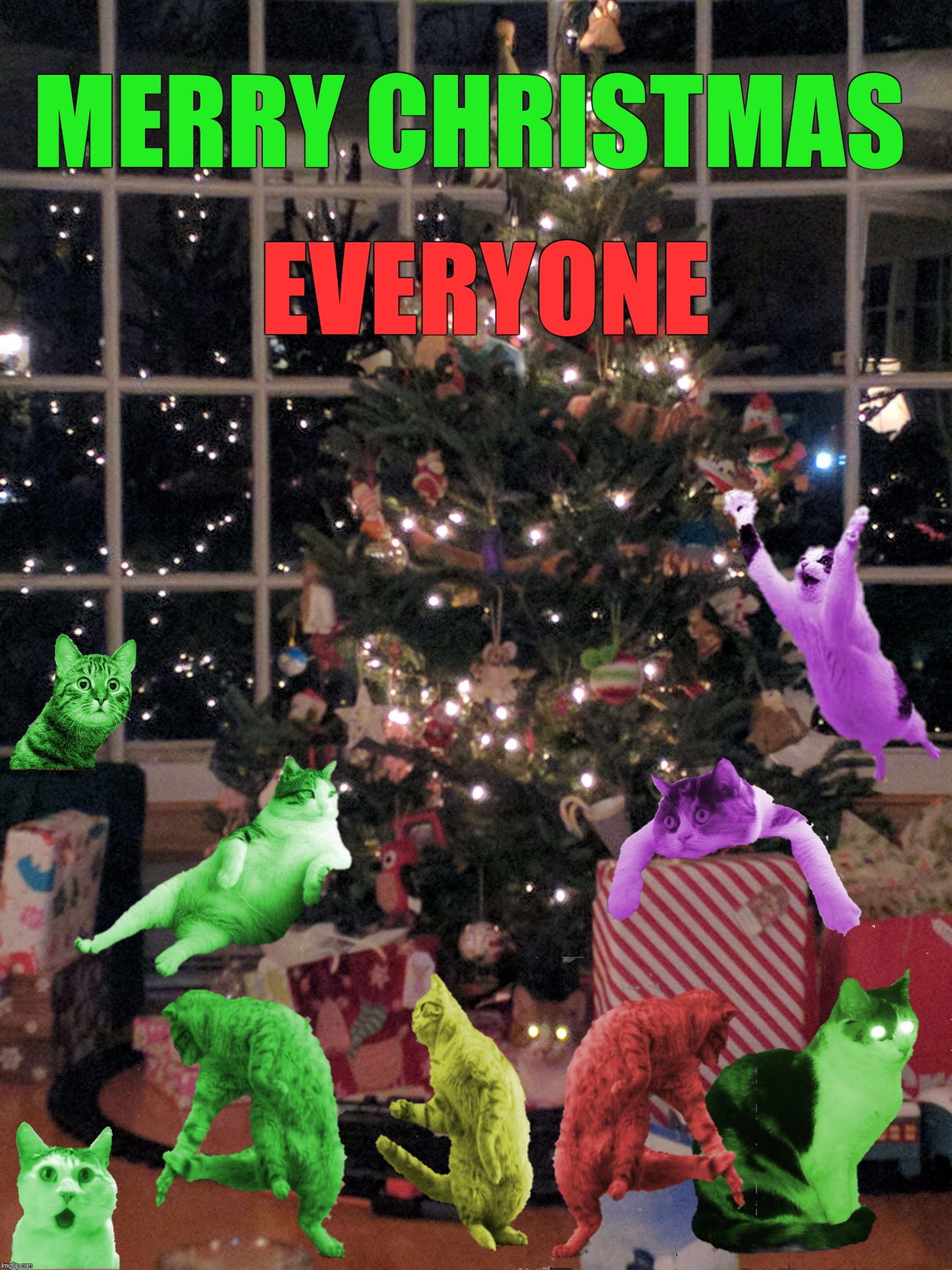 Merry Christmas to all imgflippers everywhere, and thanks to RayCat | MERRY CHRISTMAS EVERYONE | image tagged in christmas tree with cat,memes,raycat save the world,merry christmas,imgflip | made w/ Imgflip meme maker