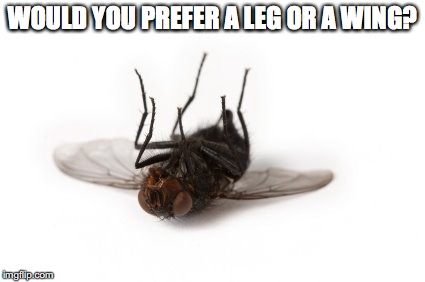WOULD YOU PREFER A LEG OR A WING? | made w/ Imgflip meme maker