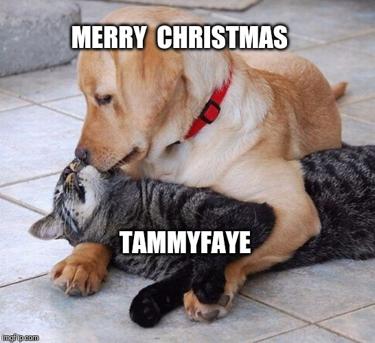 MERRY  CHRISTMAS TAMMYFAYE | made w/ Imgflip meme maker