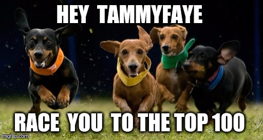 HEY  TAMMYFAYE RACE  YOU  TO THE TOP 100 | made w/ Imgflip meme maker