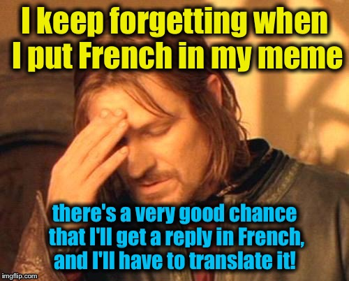 I keep forgetting when I put French in my meme there's a very good chance that I'll get a reply in French, and I'll have to translate it! | made w/ Imgflip meme maker