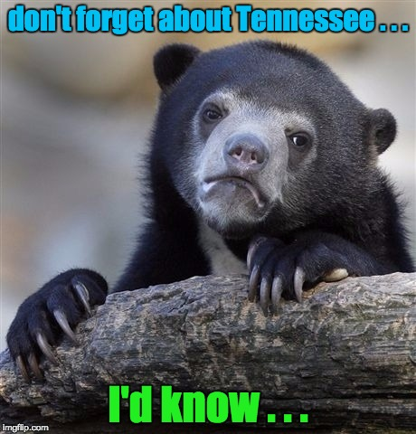 Confession Bear Meme | don't forget about Tennessee . . . I'd know . . . | image tagged in memes,confession bear | made w/ Imgflip meme maker