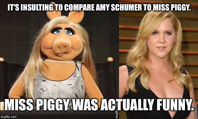 IT'S INSULTING TO COMPARE AMY SCHUMER TO MISS PIGGY. MISS PIGGY WAS ACTUALLY FUNNY. | image tagged in amy schumer | made w/ Imgflip meme maker