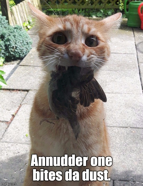 Annudder one bites da dust. | made w/ Imgflip meme maker