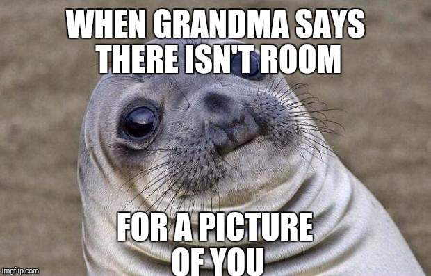 Awkward Moment Sealion Meme | WHEN GRANDMA SAYS THERE ISN'T ROOM FOR A PICTURE OF YOU | image tagged in memes,awkward moment sealion | made w/ Imgflip meme maker