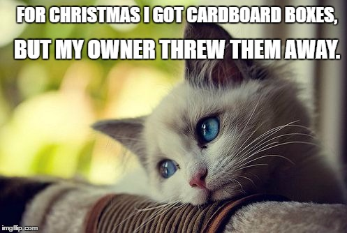 First World Problems Cat | FOR CHRISTMAS I GOT CARDBOARD BOXES, BUT MY OWNER THREW THEM AWAY. | image tagged in memes,first world problems cat | made w/ Imgflip meme maker
