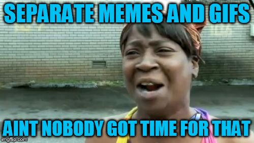 Aint Nobody Got Time For That Meme | SEPARATE MEMES AND GIFS AINT NOBODY GOT TIME FOR THAT | image tagged in memes,aint nobody got time for that | made w/ Imgflip meme maker