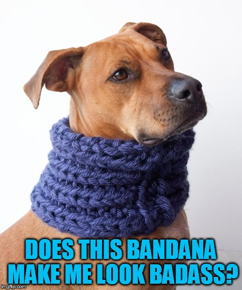 DOES THIS BANDANA MAKE ME LOOK BADASS? | made w/ Imgflip meme maker