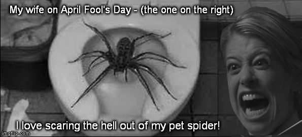 April Fool's Day Should be a National Holiday | My wife on April Fool's Day - (the one on the right) I love scaring the hell out of my pet spider! | image tagged in spider,april fool's day | made w/ Imgflip meme maker