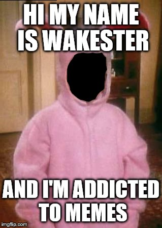 HI MY NAME IS WAKESTER AND I'M ADDICTED TO MEMES | made w/ Imgflip meme maker