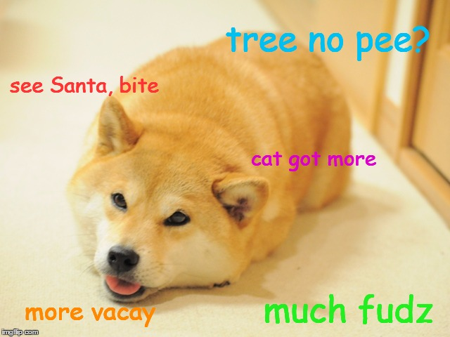 Doge after Christmas. | tree no pee? much fudz see Santa, bite cat got more more vacay | image tagged in doge,merry christmas,funny memes,sad doge,party animals,too much funny | made w/ Imgflip meme maker