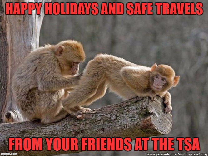 good news you're unarmed bad news i think i felt something. i'd like you to take another flight in 2 weeks so i can check on it  | HAPPY HOLIDAYS AND SAFE TRAVELS FROM YOUR FRIENDS AT THE TSA | image tagged in monkey | made w/ Imgflip meme maker
