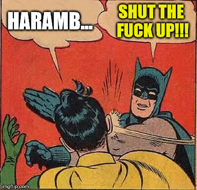 Batman Slapping Robin Meme | HARAMB... SHUT THE F**K UP!!! | image tagged in memes,batman slapping robin | made w/ Imgflip meme maker