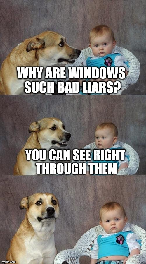 Dad Joke Dog Meme | WHY ARE WINDOWS SUCH BAD LIARS? YOU CAN SEE RIGHT THROUGH THEM | image tagged in memes,dad joke dog | made w/ Imgflip meme maker