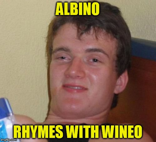 10 Guy Meme | ALBINO RHYMES WITH WINEO | image tagged in memes,10 guy | made w/ Imgflip meme maker