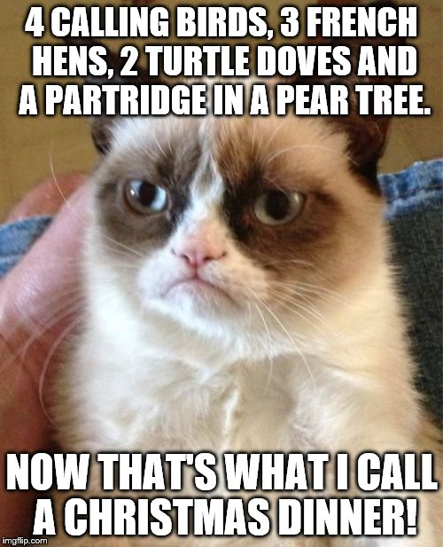 Grumpy Cat Meme | 4 CALLING BIRDS, 3 FRENCH HENS, 2 TURTLE DOVES AND A PARTRIDGE IN A PEAR TREE. NOW THAT'S WHAT I CALL A CHRISTMAS DINNER! | image tagged in memes,grumpy cat | made w/ Imgflip meme maker
