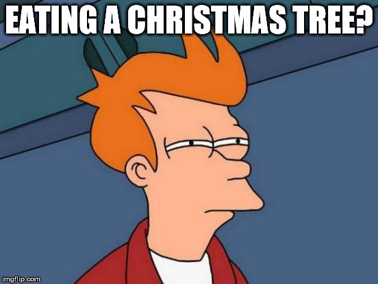 Futurama Fry Meme | EATING A CHRISTMAS TREE? | image tagged in memes,futurama fry | made w/ Imgflip meme maker