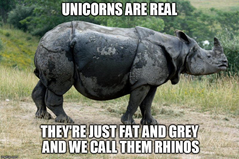 Unicorns are real | UNICORNS ARE REAL THEY'RE JUST FAT AND GREY AND WE CALL THEM RHINOS | image tagged in unicorns,rhino,reality | made w/ Imgflip meme maker
