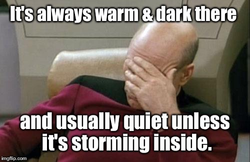 Captain Picard Facepalm Meme | It's always warm & dark there and usually quiet unless it's storming inside. | image tagged in memes,captain picard facepalm | made w/ Imgflip meme maker