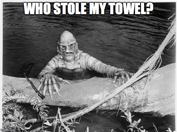 WHO STOLE MY TOWEL? | made w/ Imgflip meme maker