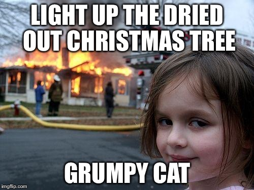 Disaster Girl Meme | LIGHT UP THE DRIED OUT CHRISTMAS TREE GRUMPY CAT | image tagged in memes,disaster girl | made w/ Imgflip meme maker