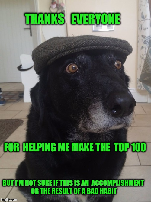 Seriously...Huge Thanks to everyone in the imgflip community !! | FOR  HELPING ME MAKE THE  TOP 100 THANKS   EVERYONE BUT I'M NOT SURE IF THIS IS AN  ACCOMPLISHMENT OR THE RESULT OF A BAD HABIT | image tagged in back in my day dog,thanks,imgflip,imgflip users | made w/ Imgflip meme maker