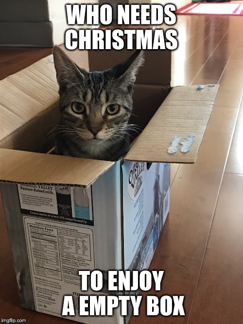WHO NEEDS CHRISTMAS TO ENJOY A EMPTY BOX | made w/ Imgflip meme maker