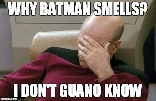 Picard ponders unexplained mysteries of elementary-school song lyrics | WHY BATMAN SMELLS? I DON'T GUANO KNOW | image tagged in memes,captain picard facepalm,batman smells,guano | made w/ Imgflip meme maker