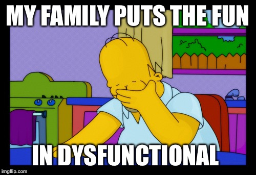 Homer face palm | MY FAMILY PUTS THE FUN IN DYSFUNCTIONAL | image tagged in homer face palm | made w/ Imgflip meme maker
