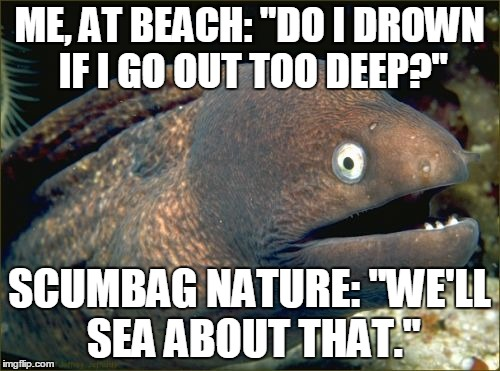 "I'm In Bad Pun-Waters | ME, AT BEACH: ""DO I DROWN IF I GO OUT TOO DEEP?"" SCUMBAG NATURE: ""WE'LL SEA ABOUT THAT."" 