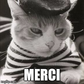 French Cat is French | MERCI | image tagged in french cat is french | made w/ Imgflip meme maker