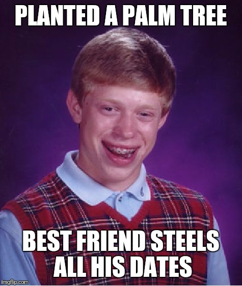 Bad Luck Brian Meme | PLANTED A PALM TREE BEST FRIEND STEELS ALL HIS DATES | image tagged in memes,bad luck brian | made w/ Imgflip meme maker